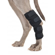 Back on Track Dog Leg Brace