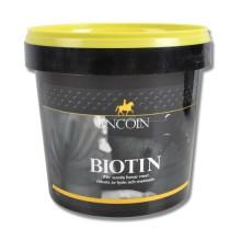 Lincoln Biotin